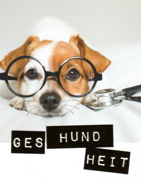 City Products-happymemories GES HUND HEIT